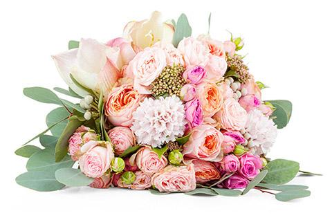Florist Blogby Floranext