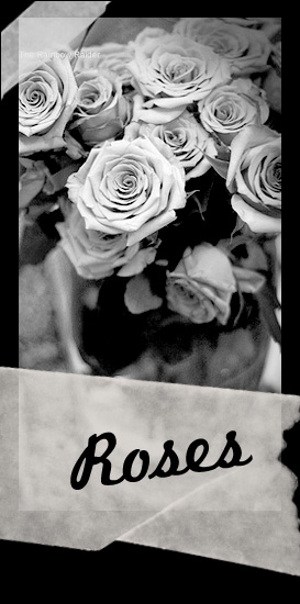 Roses - Antique Banner