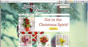 Florist Website - Christmas Background
