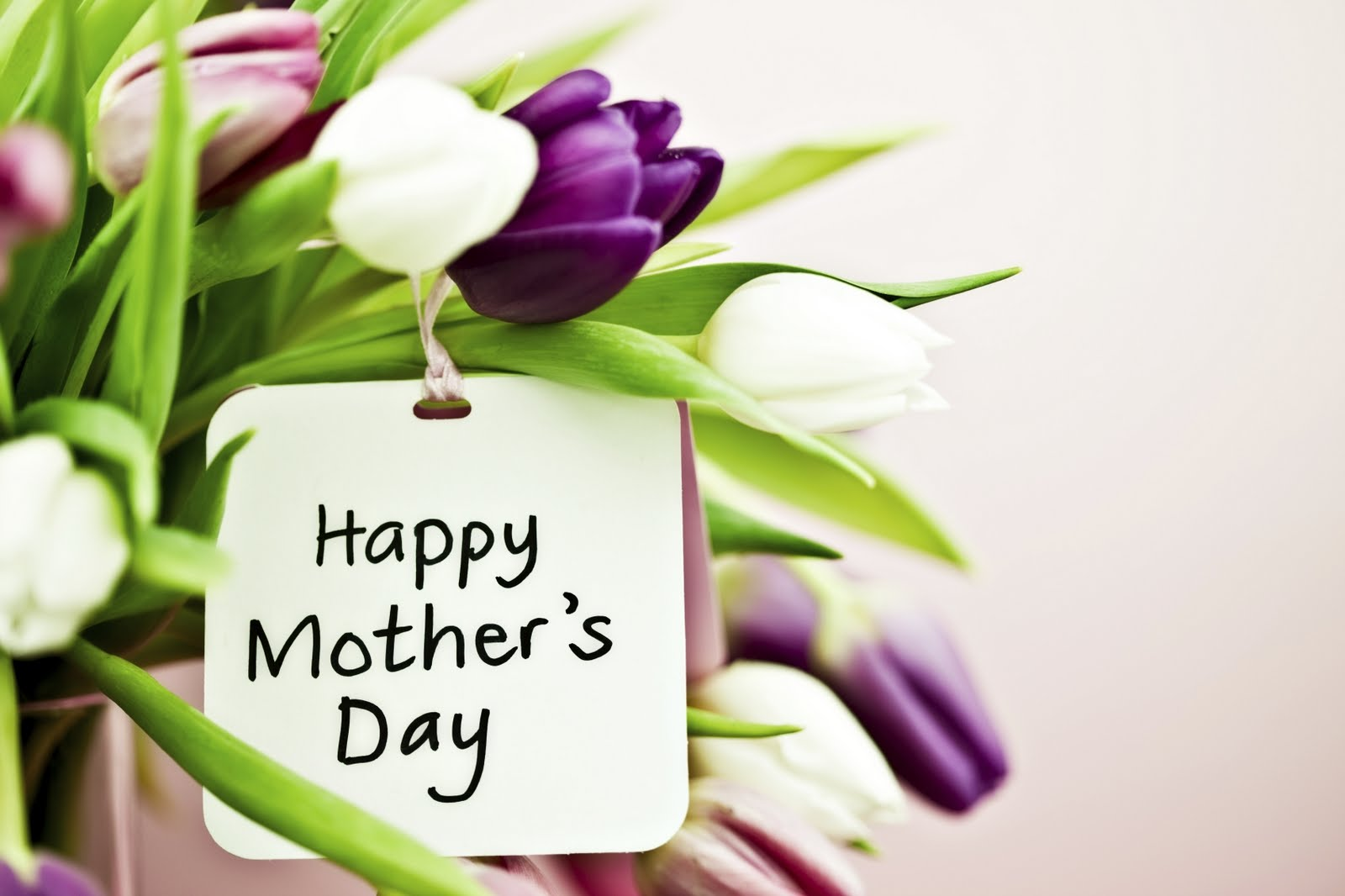5 Florist Mothers Day Marketing Ideas Floranext Florist