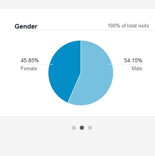 Gender graph Google Analytics Florist Website