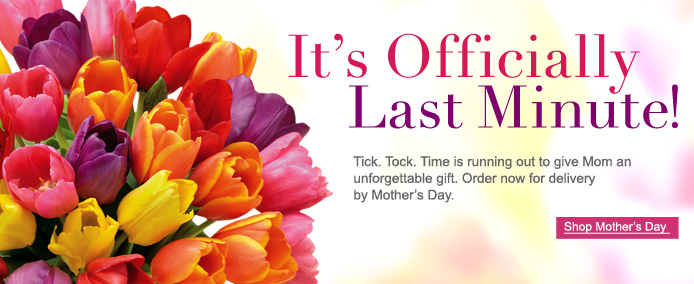 Mother's Day Last Minute Marketing Plan | Floranext ...