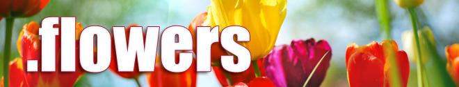 dot florist domain