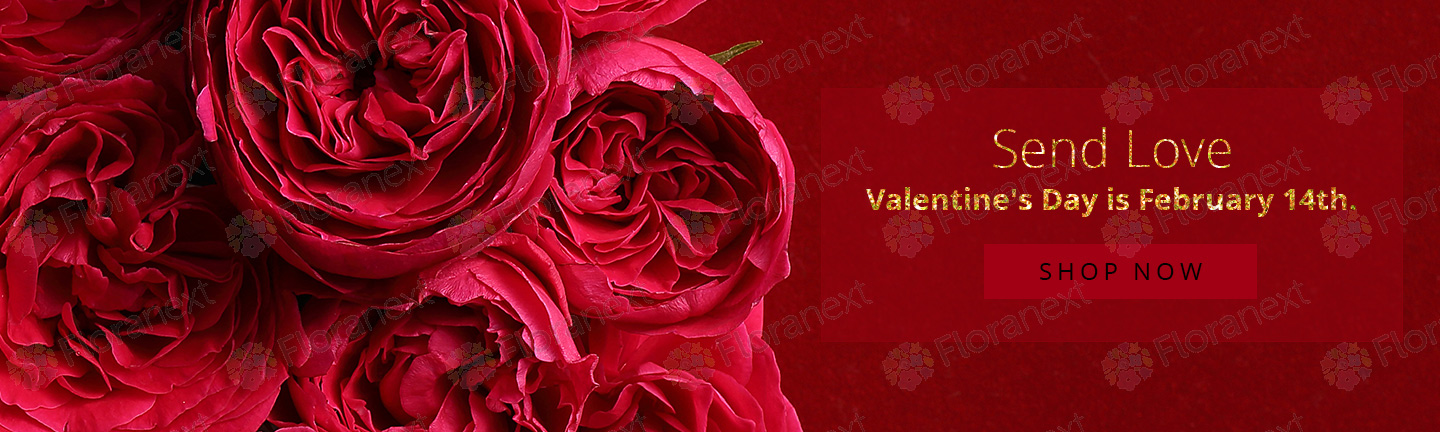 valentine s day and spring banners for florist websites