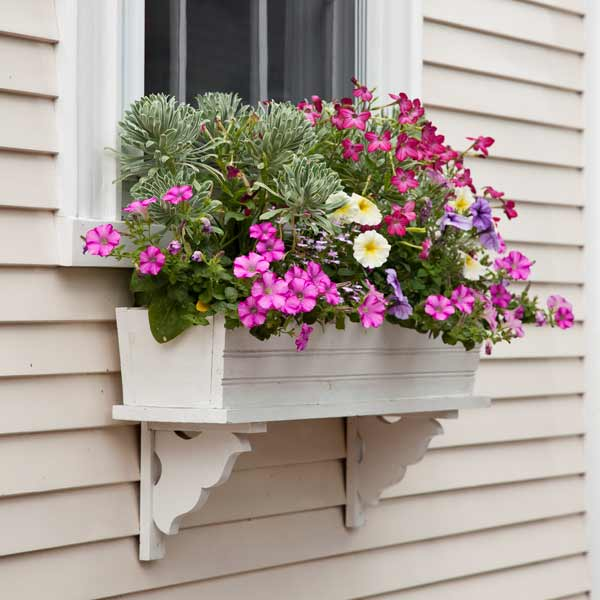 Window-Box-Floal