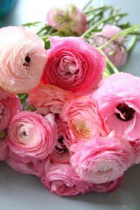 101 Floral Design