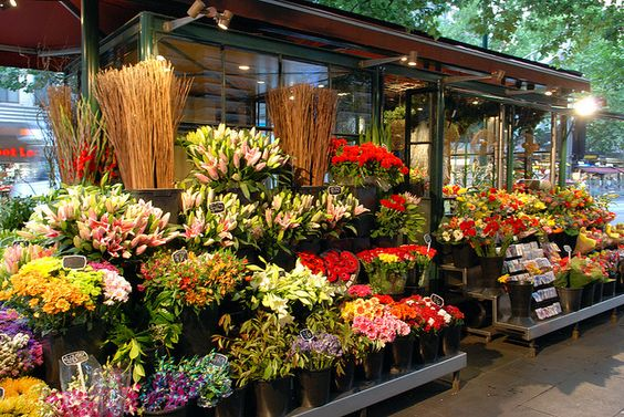 Image result for florist's shop