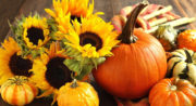 Fall Into Florist Marketing