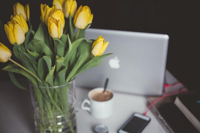 Tulips + Computer