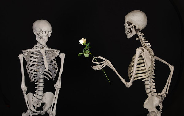 Florist-halloween