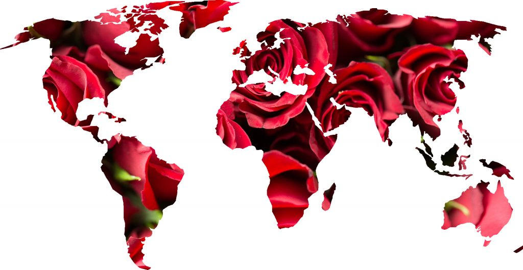 Florist-Flowers-World