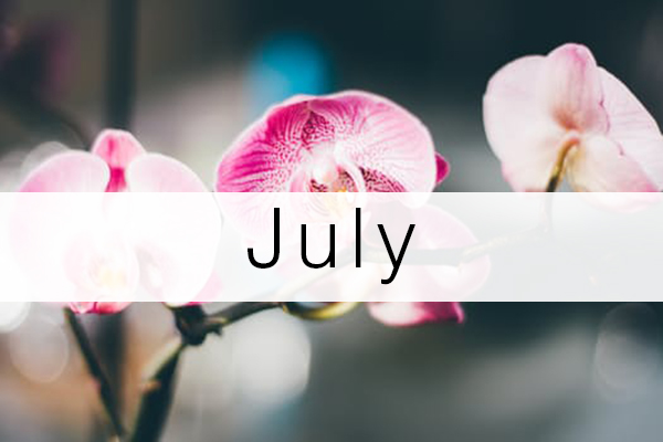 july-florist-flowers-schedule