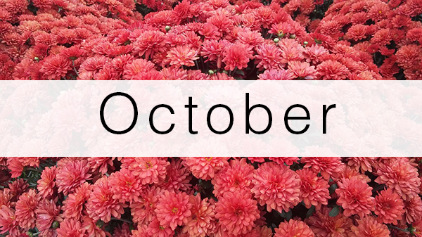 october-florist-flowers-schedule