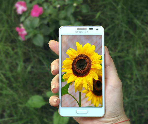 Florists-snapchat