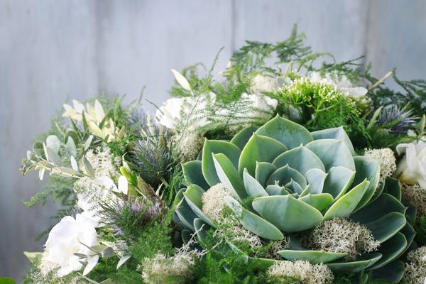 greens-florals-succulents-cheat-sheet