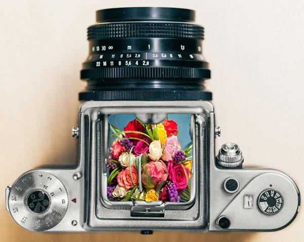 photo-florist-google