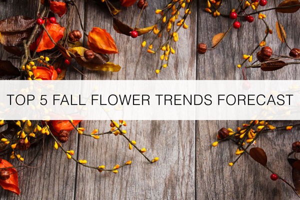 Fall-Floral-Forecast-trends-2017