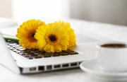 Is Your Floral Website Secure?