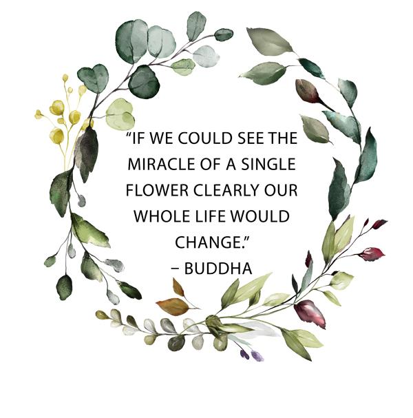 buddah-florist-quote