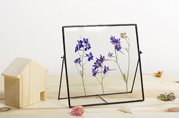 framed-pressed-flowers