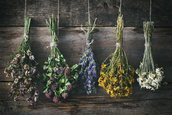 hanging-dried-flowers