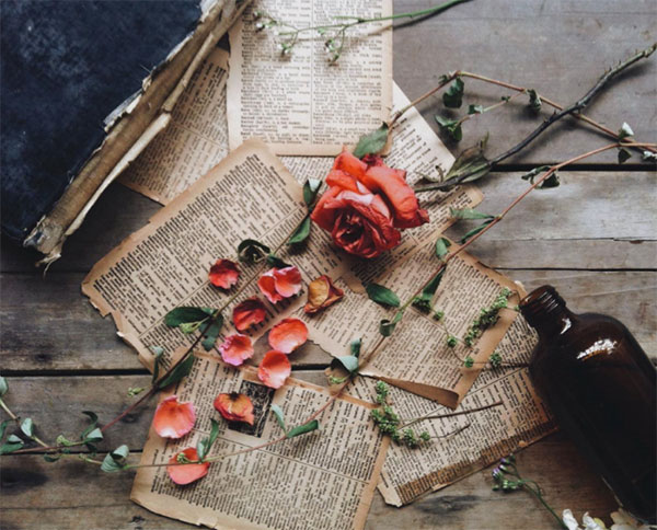 pressed-dried-flowers