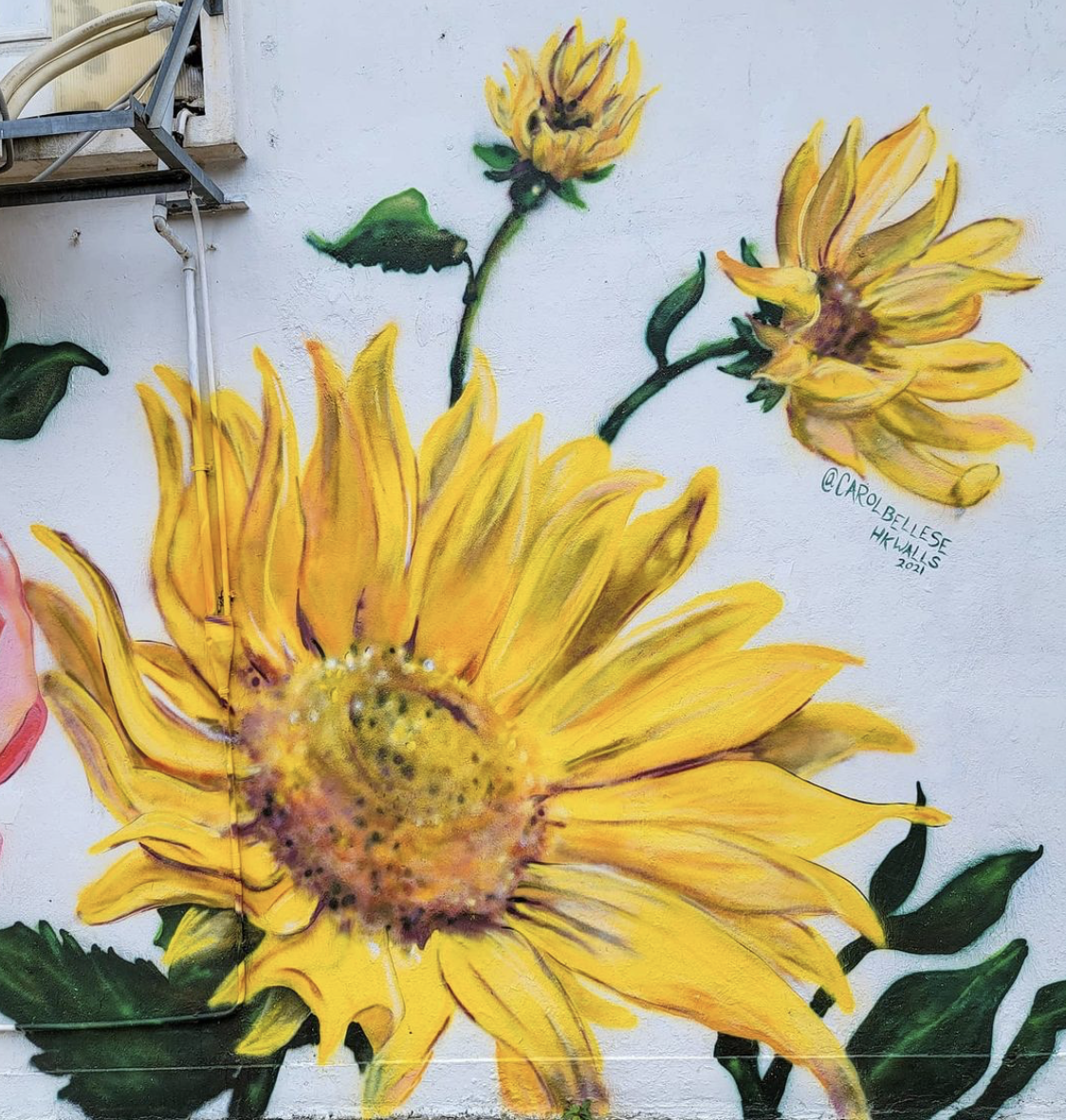 becky-exploring-floral-mural