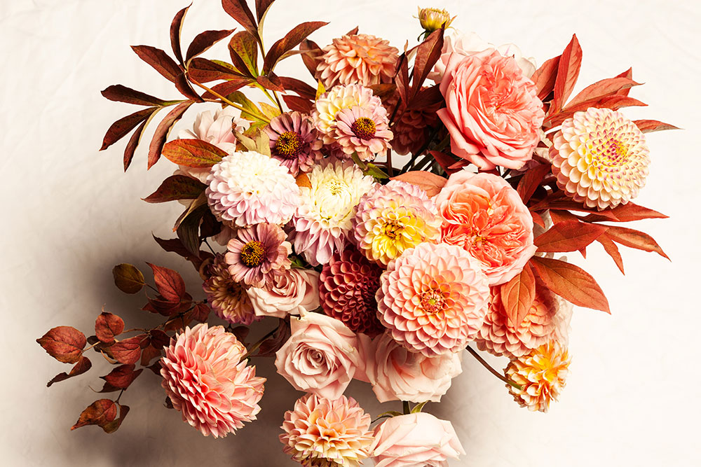 fall-blog-color-palette